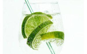 Más allá del Gin Tonic: otros cócteles que puedes preparar con la Ginebra